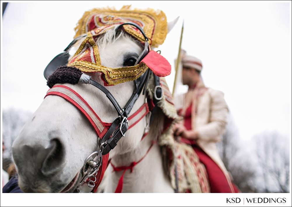 VenetianNJPhotographer_0007